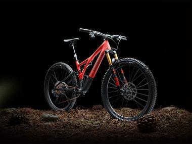 Stumpjumper 2021 Bikezilla